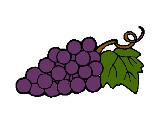 Dibujo En Linea Uva: Aprenda A Escolher As Melhores Frutas, Legumes E Verduras